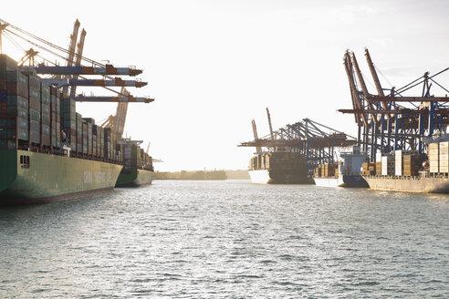 Germany, Hamburg, Container ships at the Waltershofer harbor - MS003957
