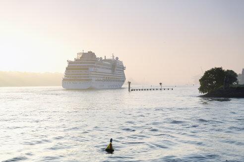 Germany, Hamburg, cruise ship on Elbe river at Finkenwerder - MS003977