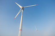Germany, Hamburg, wind turbine in early morning fog - MSF003983