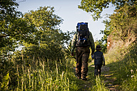 Germany, Rhineland-Palatinate, Moselsteig, father and his little son hiking, back view - PAF000682