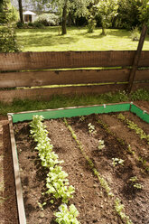 Garden with mixed vegetable patch and slug fence - ONF000573