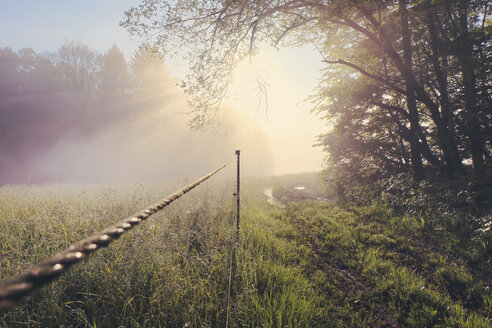 Germany, North Rhine-Westphalia, Morning mist and sunrise - ONF000562