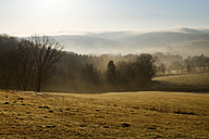 Germany, North Rhine-Westphalia, Bergisches Land, landscape at morning mist - ONF000580
