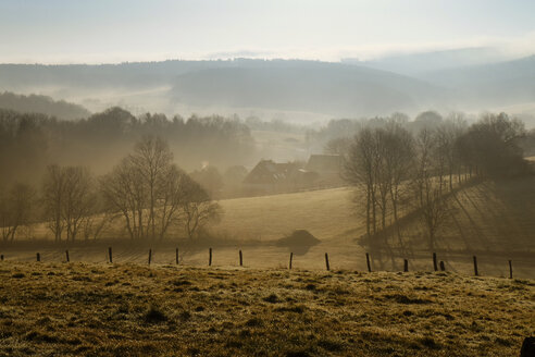 Germany, North Rhine-Westphalia, Bergisches Land, Ruppichteroth,  landscape at morning mist - ONF000582