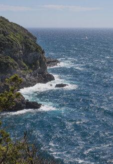 France, Provence Alpes Cote d'Azur, Var, Giens peninsula, Mediterranean coast - JBF000103