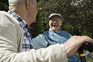 Two old friends having fun in the park - UUF000678