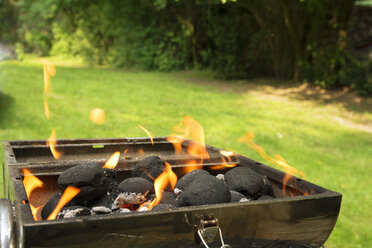 Burning coal briquets on grill in garden - ONF000587