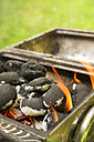 Burning coal briquets on grill in garden - ONF000589