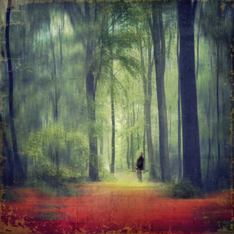 Person standing in forest, composite - DWI000082