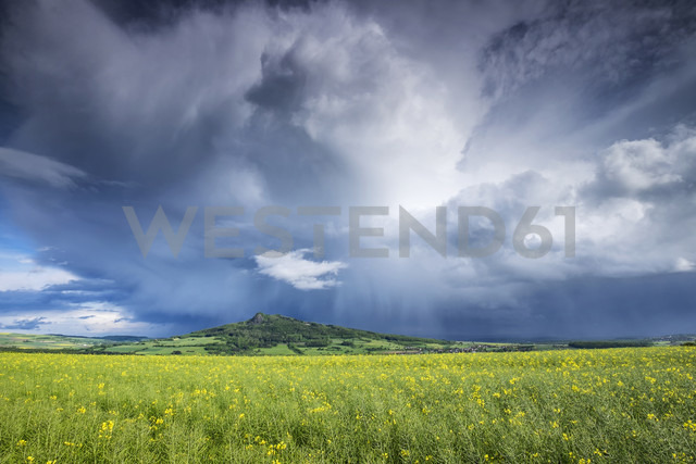 Germany, Baden-Wuerttemberg, Constance district, field at Hegau with Hohenstoffeln in the background - ELF001054