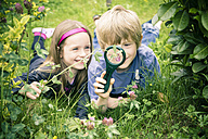 Brother and sister lying on meadow watching flowers with magnifying glass - SARF000679