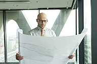 Businessman in office looking at blueprint - WESTF019369