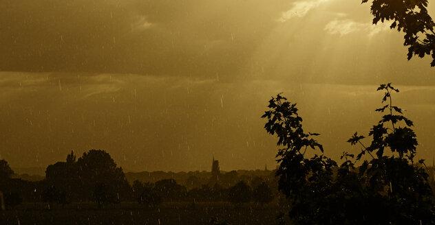 Germany, North Rhine-Westphalia, Minden, Weserauen, Rainy weather - HOHF000836