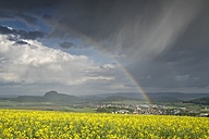 Germany, Baden-Wuerttemberg, Constance district, Hegau, Rainbow, Rape field - ELF001064