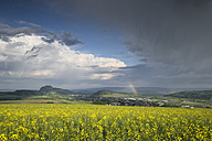 Germany, Baden-Wuerttemberg, Constance district, Hegau, Rape field and rainbow - ELF001087
