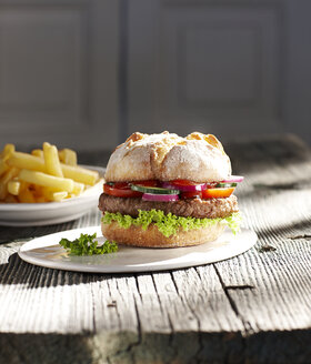 Hamburger on plate and french fries - KSWF001315