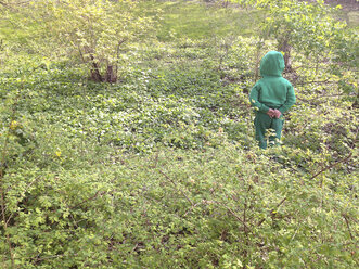 Three-year child in green clothes hiding among green plants - ZMF000299