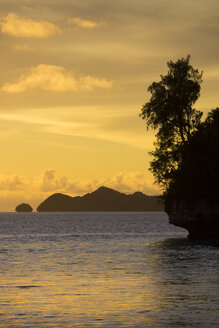 Micronesia, Palau, tropical island in evening light - JWAF000076