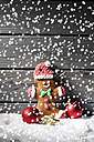 Gingerbread man and Christmas bubbles  with rippling artificial snow in front - CSF021674