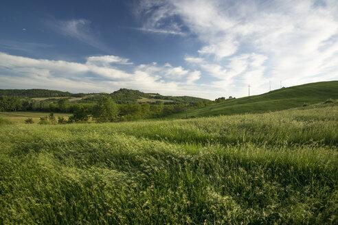 Italy, Tuscany, Crete Senesi, Landscape - MYF000436