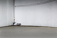 Germany, Berlin, Pigeon on nest, Columba - NGF000125