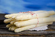 Bunch of white asparagus, Asparagus officinalis - ODF000758