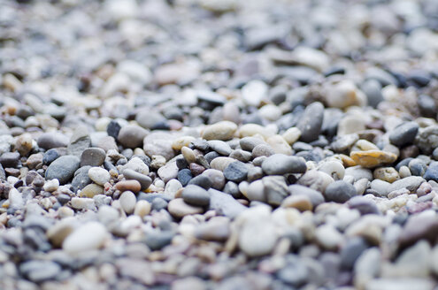Pebble stones at the banks of Rhine River - CZF000153