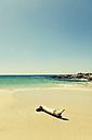 Spain, Majorca, driftwood at beach Es Trenc - MEM000239