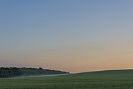 Germany, Saxony, Mulden Valley, Sunset and fog - MJF001284