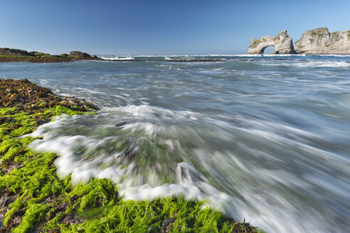 New Zealand, Golden Bay, Wharariki Beach, waves gushing over rocks with seaweed at the beach and rock arch in the background - SHF001445