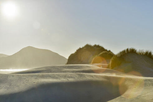 New Zealand, Golden Bay, Wharariki Beach, wind patterns and reflections in a sand dune - SHF001461