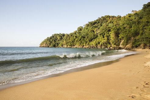 Caribbean, Trinidad and Tobago, Tobago, Englishman's Bay beach - SKF001549