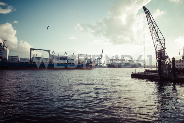 Germany, Hamburg, Port of Hamburg, Museum harbour Oevelgoenne, Old harbour crane, Containerterminal Burchhardkai in the background - KRP000545