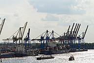 Germany, Hamurg, ships and container cranes at River Elbe - KRP000590