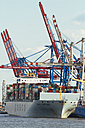 Germany, Hamurg, ship and cranes at container terminal Tollerort - KRP000615
