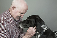 Portrait of senior man with his German Shorthaired Pointer in front of grey background - JATF000754