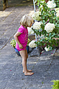 Little girl smelling at Hydrangea - JFEF000443