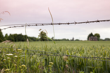 Germany, North Rhine-Westphalia, Luenen, Barbed wire fence at field, House in the background - WI000829
