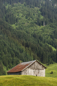 Austria, Allgaeu High Alps, wooden hut in Kleinwalsertal - STSF000412