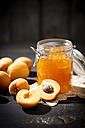 Apricot jam and apricots, Prunus Armeniaca - MAEF008584