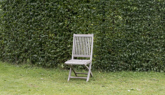 Single garden chair in front of beech hedge - HLF000622