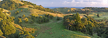 New Zealand, South Island, Tasman, Golden Bay, Puponga, Puponga hills near Cape Farewell Spit - SHF001572