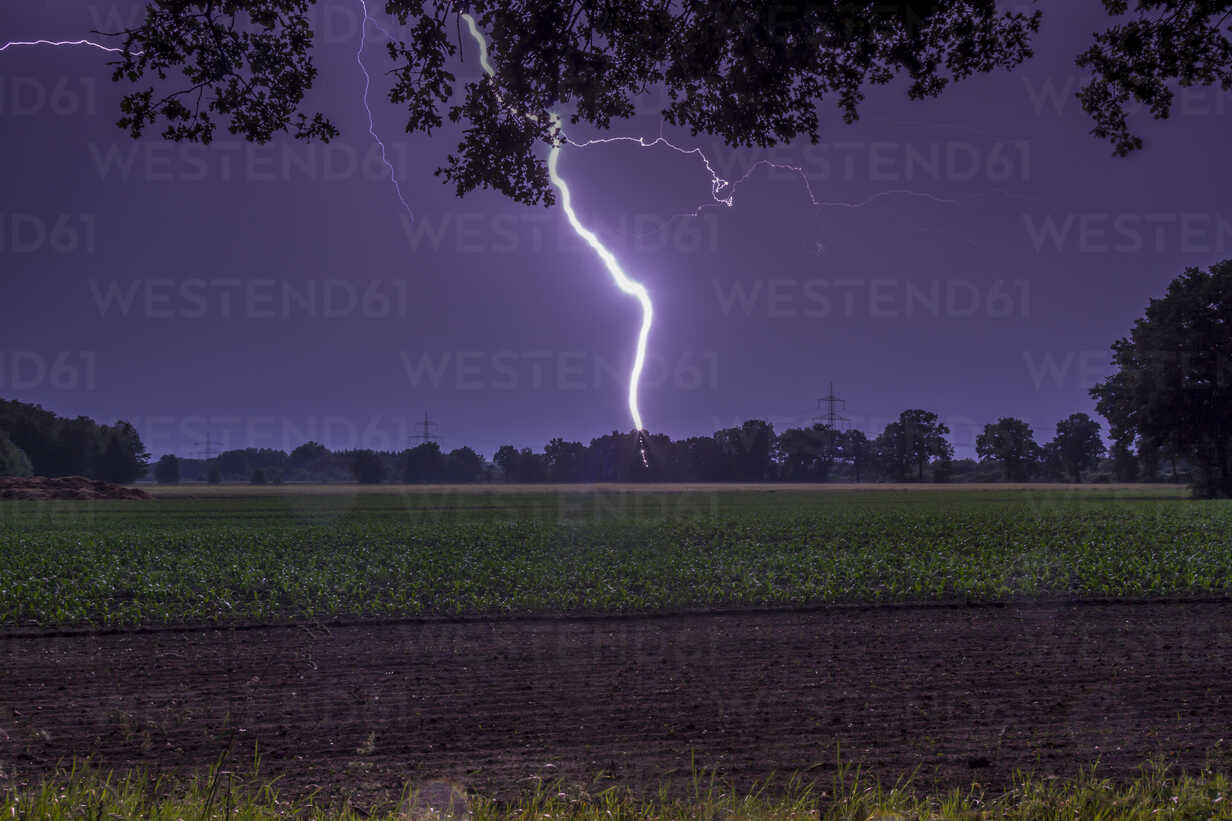 Germany, Lower Saxony, Handorf, lightning strike on the countryside at night - NKF000169 - Stefan Kunert/Westend61
