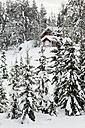 Scandinavia, Finland, Kittilaentie, Empty wooden hut in the forest in winter - SR000606