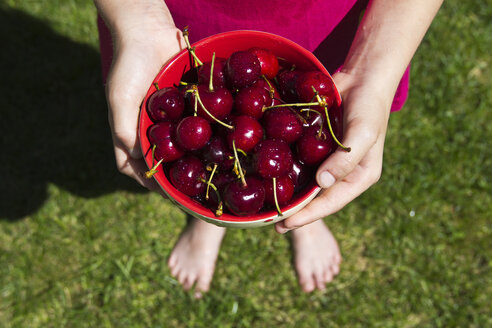 Girl standing on a meadow holding bowl of sweet cherries, partial view - YFF000194