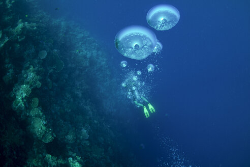 Oceania, Palau, diver at coral reef with air bubbles in the foreground - JWAF000151