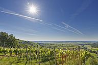 Austria, Burgenland, Oberwart District, Eisenberg an der Pinka, - SIEF005585