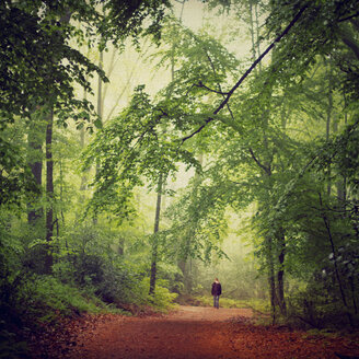 Germany, man walking in the woods - DWI000119