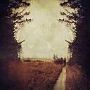 Belgium, Longfaye, silhouette of a man walking on trail through High Venn - DWI000113