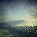 Jogger running in misty landscape at sunrise - DWI000123